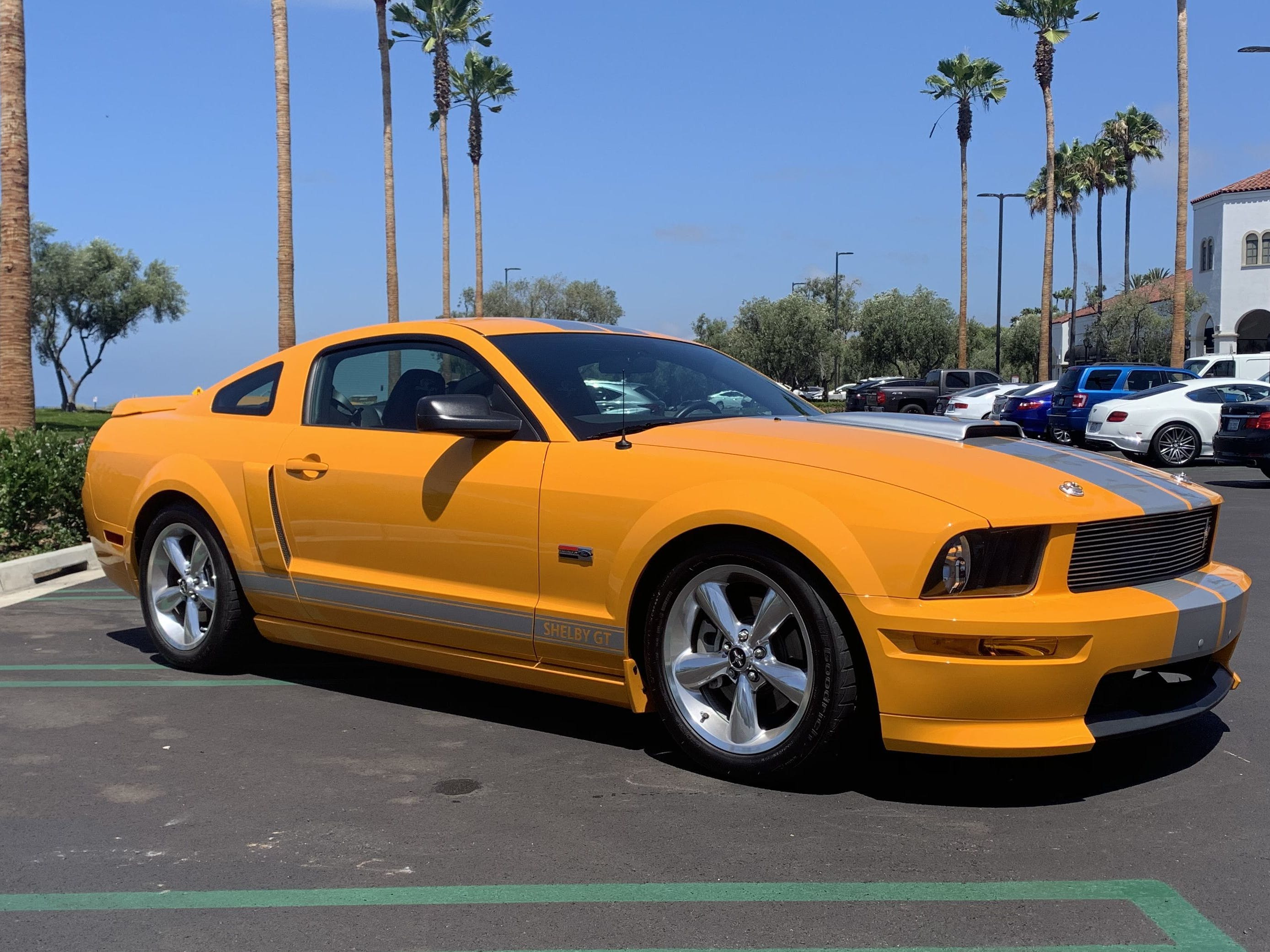 2008 Ford Mustang Shelby GT-C