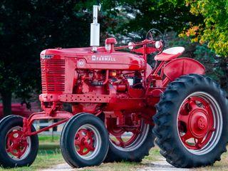 1949 Farmall Mv High Crop