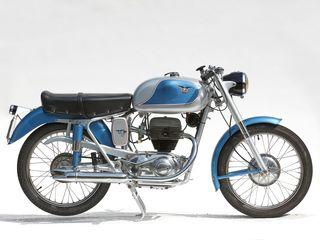 1955 Cm Francolino 175